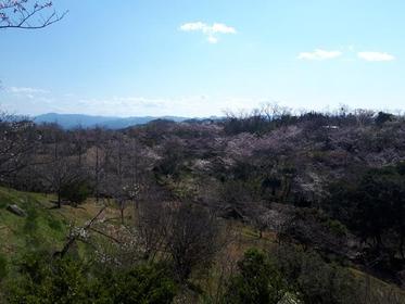 平草原公園 image