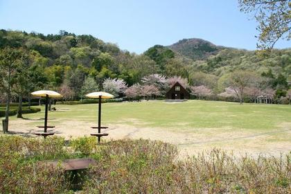 二上山故乡公园 image