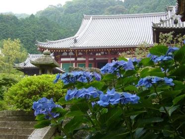 矢田寺 image