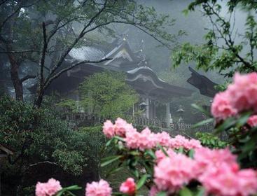 玉置神社 image