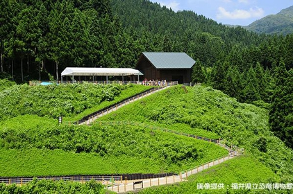 Fukui Prefectural Dinosaur Museum Field Station image
