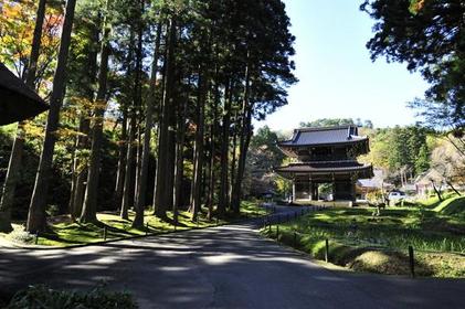 林泉寺 image