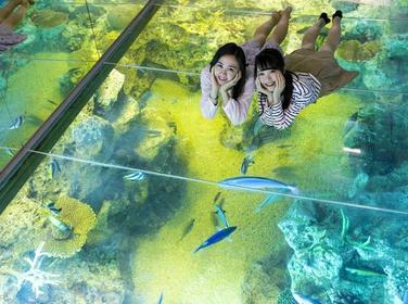 越前松岛水族馆 image