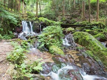 Uriwari Waterfall image