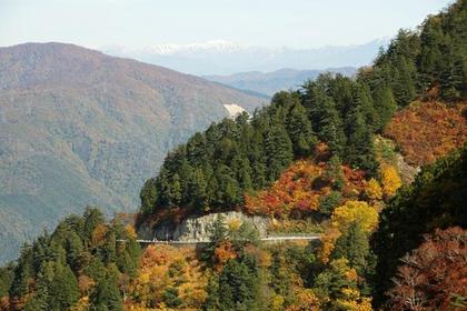 白山白川郷ホワイトロード image
