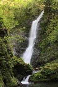 Noka Falls image