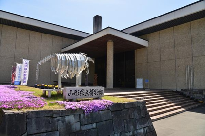 山形县立博物馆 image