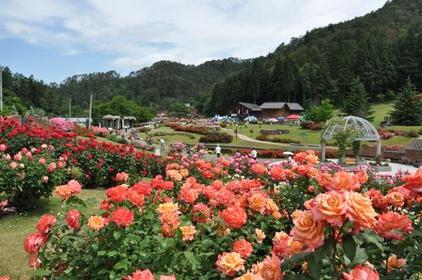 東沢バラ公園 image