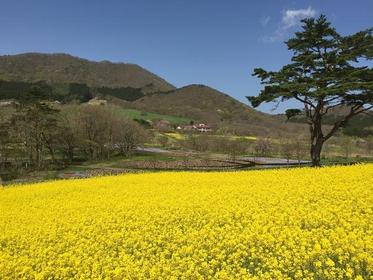 Yakurai Garden image