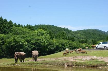 秋吉台自然動物公園 image