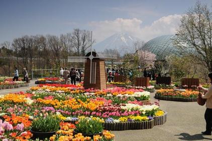 Tottori Flower Gallery (Hanakairo) image