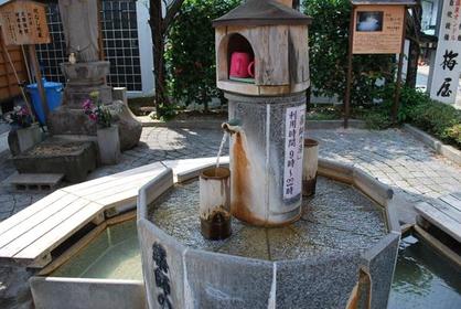 Yakushinoyu Hot Springs image
