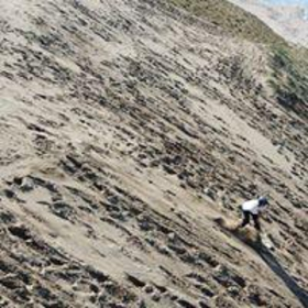 Sandboarding image