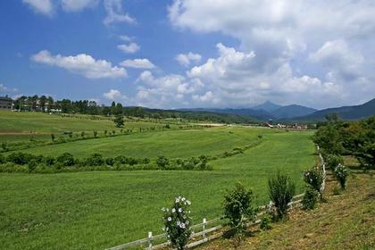 Mikigahara image