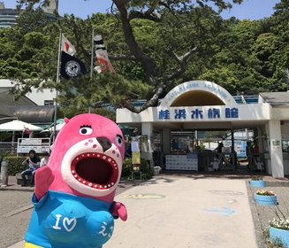 桂浜水族館 image