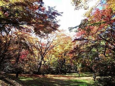 上ノ山公園 image