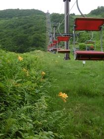 Tenjin Pass Pair Lift image