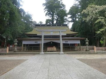Kashimajingu image