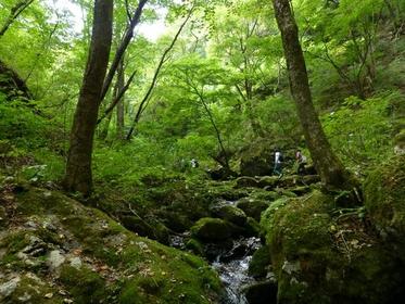 岩石公園 image