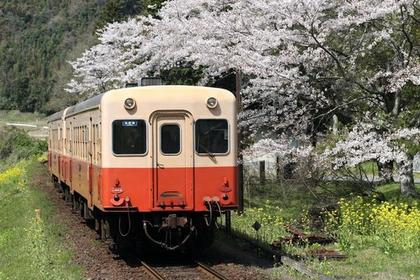 小湊鐵道 image