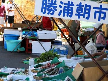Katsuura Morning Market image