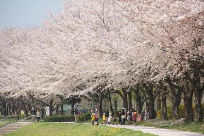川越水上公園 image