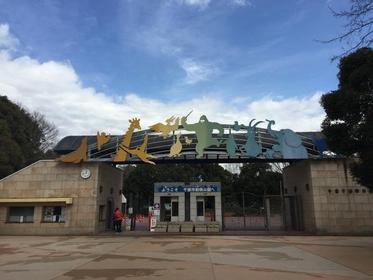 千葉市動物公園 image