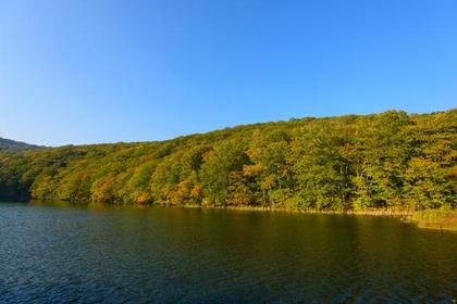 Tsutanuma Pond image