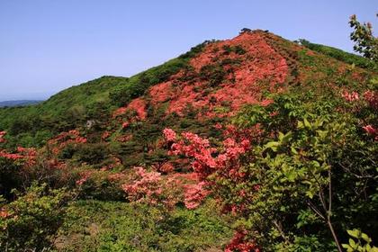 Mt. Tokusenjosan image