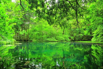 Ushiwatari River, Maruike-sama Pond image