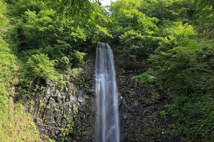 玉簾の滝(山形) image