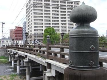 Giboshi Pillars of Kaminohashi Bridge image