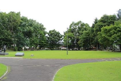 银白杨公园 image
