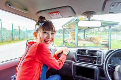 Iwate Safari Park image