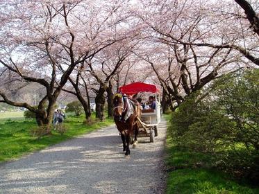 Kitakami Tenshochi Horse-Drawn Carriage image