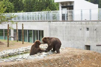 北秋田市 熊熊公園 image
