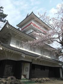 Kubota Castle Ruins image