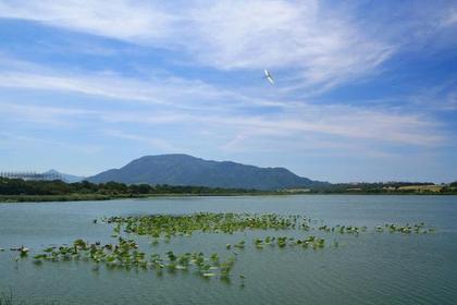 사카타(사카타 공원) image
