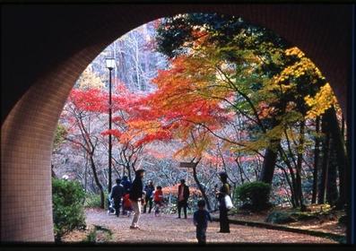 야히코 공원 image