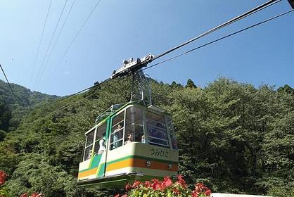 弥彦山ロープウェイ image