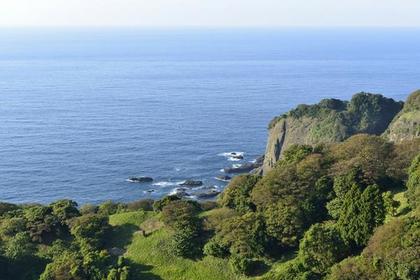 Cape Echizen image