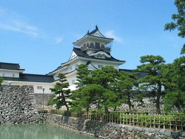 Toyama Municipal Folk Museum, Toyama Castle image