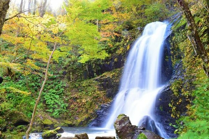 Utsue Shijuhattaki Falls (Utsue Shijuhattaki Falls Prefectural Nature Park) image