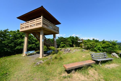 Japan Line Unuma Forest image