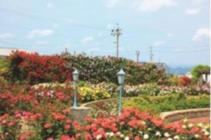 大野町玫瑰公園 image