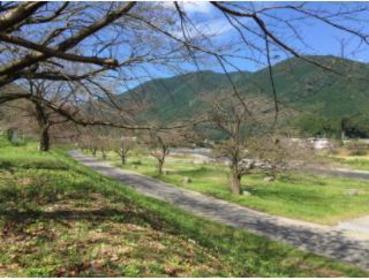 Kasukawa Auto Campground image