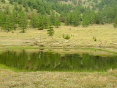 Ikenotaira Wetlands image