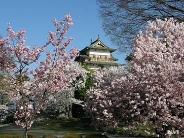 諏訪高島城 image