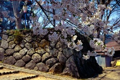 이야마 성터 공원 image