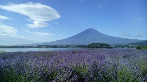 Oishi Park image